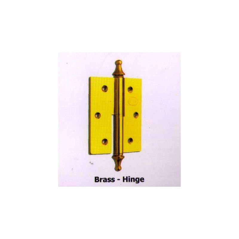 Large Hinges With Large Accessory