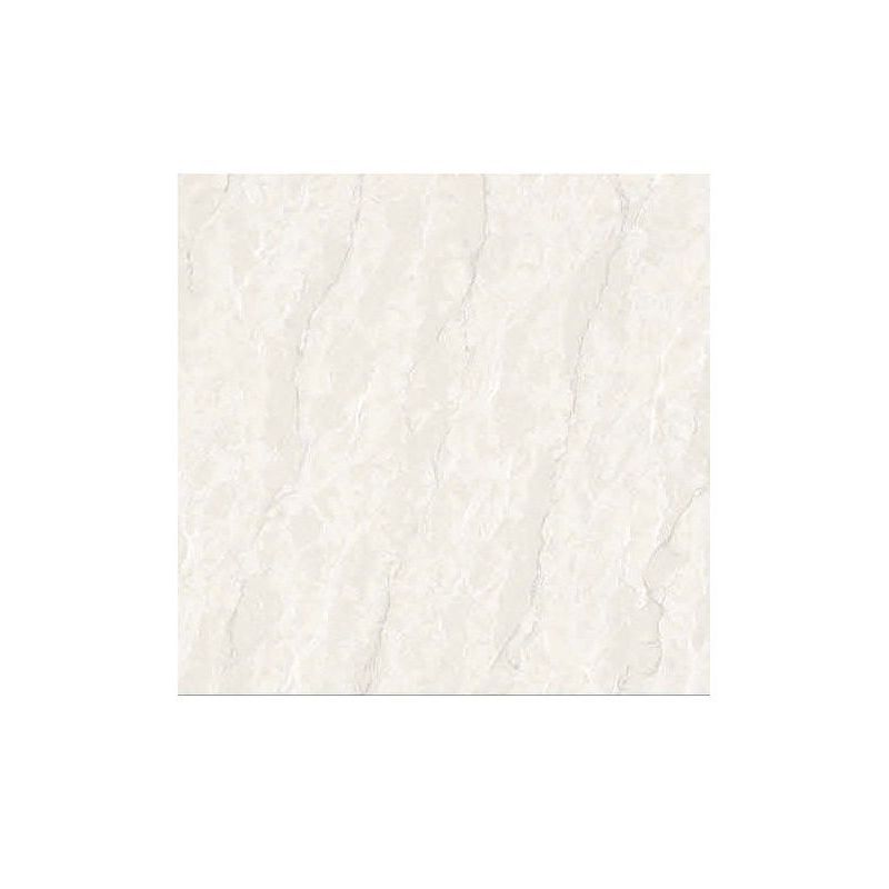 Beroia Polished Porcelain EB-6101