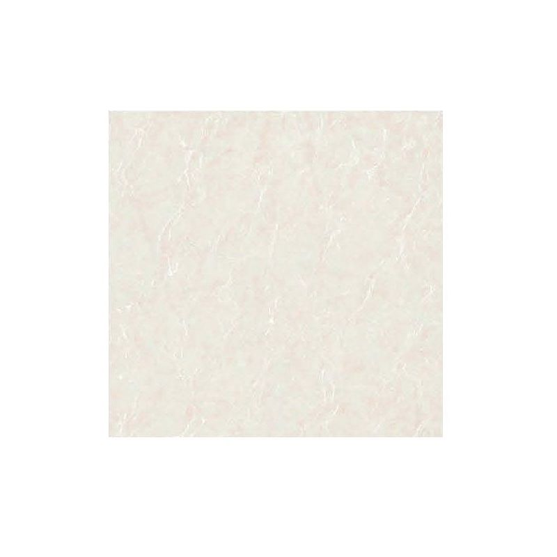 Beroia Polished Porcelain EB-6164